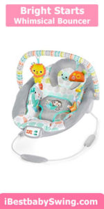 Bright Starts Whimsical Wild Cradling Bouncer Review